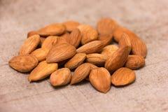 Apricot kernels Royalty Free Stock Photo