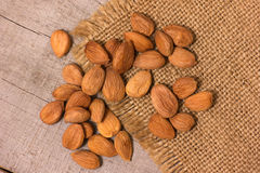 Apricot kernels Royalty Free Stock Images