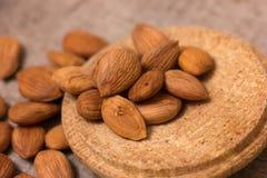 Apricot kernels Stock Image