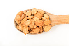 Apricot kernels Stock Image