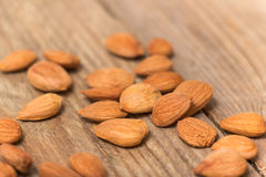 Apricot kernels Royalty Free Stock Photography