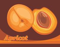 Apricot. Label for design stock photography