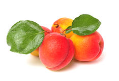 Apricot with leaf Royalty Free Stock Photo
