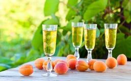 Apricot liquor Stock Image