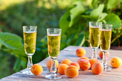 Apricot liquor Stock Photography