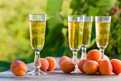 Apricot liquor Stock Photos