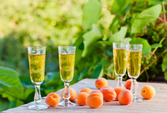 Apricot liquor Royalty Free Stock Photography