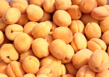 Apricot. It is a lot of ripe fruits of an . Horizontal photo Royalty Free Stock Images