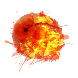 Apricot  made of colorful splashes Royalty Free Stock Photo