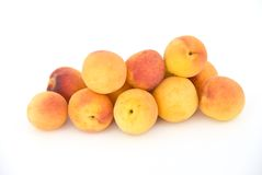Apricot meeting. Stock Image
