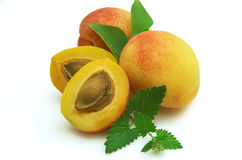 THE APRICOT AND MINT Royalty Free Stock Photography