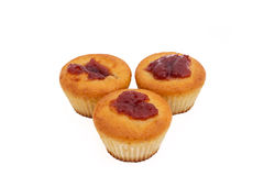 Apricot Muffins Stock Photos