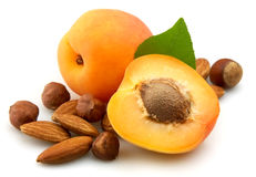 Apricot with nuts Royalty Free Stock Photography