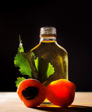 Apricot oil Stock Photography