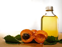 Apricot oil Stock Image