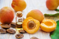 Apricot oil in a small jar. selective focus. Nature stock images