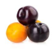 Apricot, peach plum Stock Photos