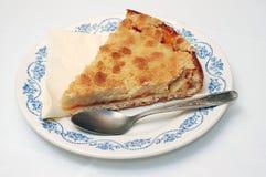 Apricot pie. Royalty Free Stock Photos
