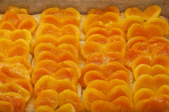 Apricot pie freshly baked Stock Images