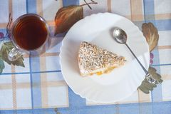 Apricot pie on plate Stock Image