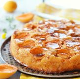 Apricot pie Stock Images
