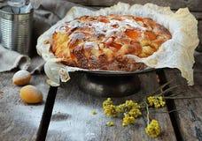 Apricot pie Stock Image