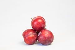 Apricot plum Royalty Free Stock Photos