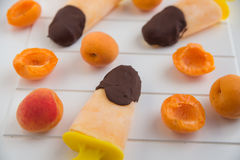 Apricot Popsicles dipped in dark chocolate Stock Image