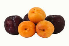 Apricot and Prune Royalty Free Stock Photo