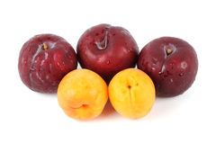 Apricot and Prune Stock Image