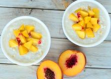 Apricot pudding Stock Image