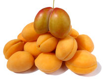 Apricot pyramid. A pyramid of apricot and plum Stock Image