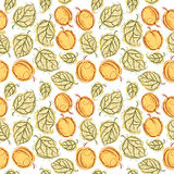 Apricot seamless pattern Royalty Free Stock Images