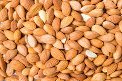 Apricot seeds forming background pattern Royalty Free Stock Images