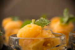 Apricot Sorbet Royalty Free Stock Photo