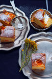 Apricot sponge cake Royalty Free Stock Photography