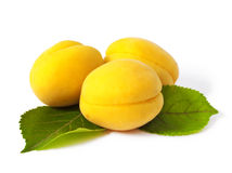Apricot Stock Images