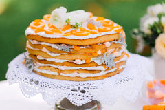 Apricot and tangerine layer cake Stock Photos