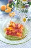 Apricot tart Royalty Free Stock Photo