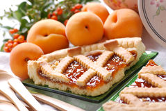 Free Apricot Tart Royalty Free Stock Images - 26845609