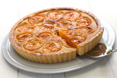 Free Apricot Tart Royalty Free Stock Images - 56072719