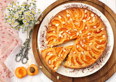 Apricot tart and bouquet of daisies. Summer mood: apricot tart and bouquet of daisies Royalty Free Stock Photography
