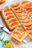 Apricot tart Royalty Free Stock Photos