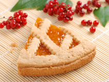 Apricot tart with currants Royalty Free Stock Photos