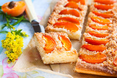 Apricot tart Stock Photo
