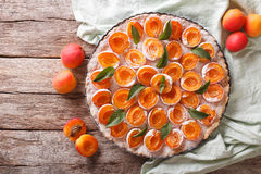 apricot tart with powdered sugar and mint close up in dish. horizontal top view stock images