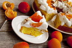 Apricot Tart with Whipped Cream Stock Images