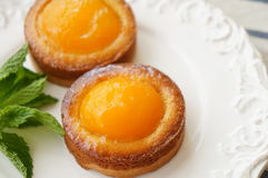 Apricot Tart Royalty Free Stock Images