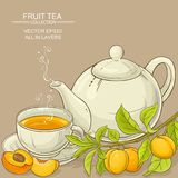 Apricot tea illustration Stock Photography