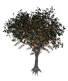 Apricot tree - 3D render Stock Photography